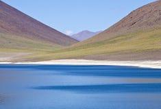 5 altiplano智利miniques 库存照片