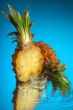 5 ananasy Zdjęcie Royalty Free