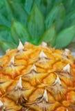 5 ananasy Zdjęcie Stock