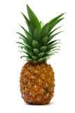 5 ananasy Obrazy Stock