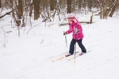 5 anos de esqui através dos campos da menina idosa Imagens de Stock