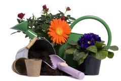 5 arbeta i trädgården hjälpmedel Royaltyfria Foton