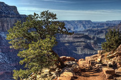 5 Arizona jar uroczysty Obrazy Royalty Free