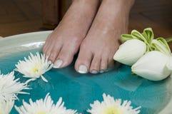 5 aromatherapy fot blommar lotusblommabrunnsorten Fotografering för Bildbyråer