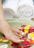 5 aromatherapy fot brunnsortvatten Royaltyfri Foto