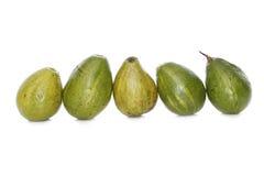5 avocado nella riga Fotografie Stock Libere da Diritti