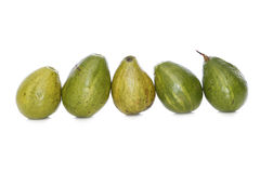 5 avocados in line Royalty Free Stock Photos