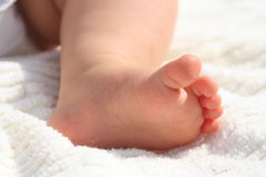 5 baby toes. Close up of baby toes royalty free stock images