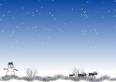 5 biegun północny Fotografia Stock
