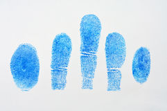 5 Blue fingerprint. On white paper Stock Images