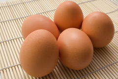 5 brown eggs Royalty Free Stock Image