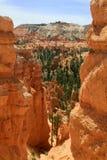 5 bryce峡谷 图库摄影