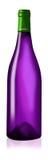 5 butelka Obraz Royalty Free