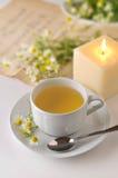 5 chamomile Στοκ εικόνες με δικαίωμα ελεύθερης χρήσης