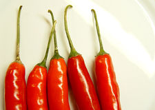 5 chillies arranged in a row. Five red chillis arrange in a vertical row on a white plate with some space for text royalty free stock image