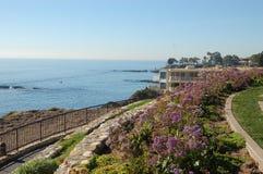 5 Corona del Mar 免版税库存照片