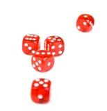 5 dices играть красный цвет Стоковое фото RF
