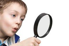 5 ekspertyz Obraz Stock