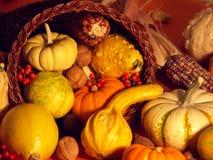 5 etapów Święto dziękczynienia Fotografia Stock