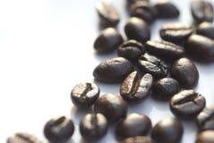 5 fasoli kawę Fotografia Royalty Free
