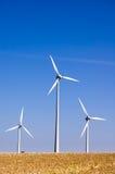 5 gospodarstw rolnych wiatr Fotografia Royalty Free