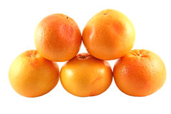 5 grapefruits Royalty Free Stock Photos
