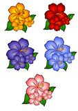 5 Hawaiian Hibiscus Flowers. A clip art illustration of 5 individually colored hawaiian hibiscus flowers in gold orange, pink, blue, purple, and red
