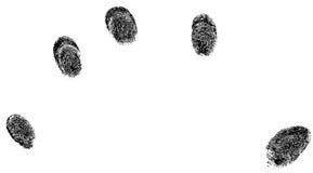 5 impronte digitali nere Fotografie Stock