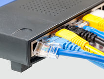 5 kabli kota kolorów wielokrotności router Obraz Royalty Free