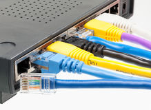5 kabli kota kolorów wielokrotności router Obrazy Royalty Free