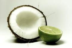 5 kokosów Zdjęcia Royalty Free