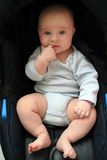 5 months old baby boy in a seat stock image