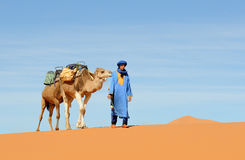 5 morrocan的沙漠 库存照片