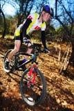 5 mountainbiking 免版税库存照片