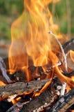 5 ogień Obrazy Stock