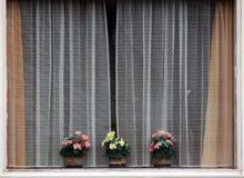 5 okno Fotografia Stock