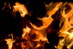 5 płonących embers Obraz Stock