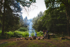 5 Person Doing Campfire in Center on Jungle Royalty Free Stock Photos