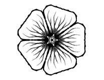 5 Petal Flower Glyph. B&w line art flower symbol Royalty Free Stock Photo