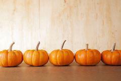 5 potirons oranges dans une ligne Images stock