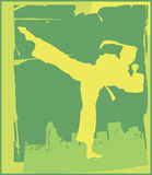 5 poza karate. Fotografia Stock