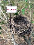 5 ptaków gniazda nieruchomości real Zdjęcie Royalty Free