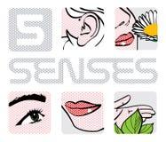 5 sens illustration de vecteur