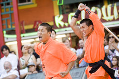5 shaolin kung - fu. Zdjęcia Royalty Free