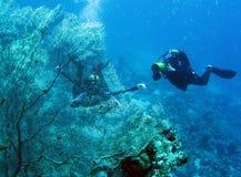 5 sous-marins Images libres de droits