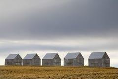 5 stodole obrazy royalty free