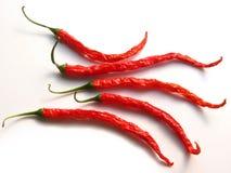 5 tajskich chilis Zdjęcie Royalty Free