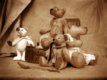5 teddy Στοκ Εικόνες