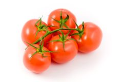 5 tomatos Stock Photography