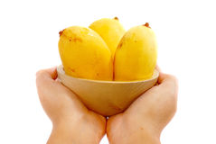5 tropiska mangoserie Royaltyfria Foton